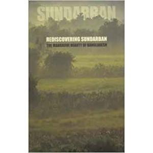Rediscovering Sundarban: The Mangrove Beauty of Bangladesh