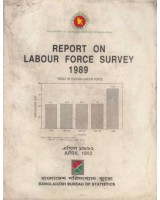 Report on Labour Force Survey 1989