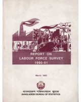Report on Labour Force Survey 1990-91