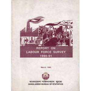Report on Labour Force Survey 1990-91