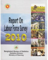 Report on Labour Force Survey 2010