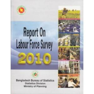 Report on Labour Force Survey 2010